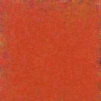 Peter Tollens, Rot Orange Orange Rot, Februar-Mai 2011