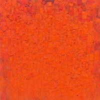 Peter Tollens, Orange Orange Rot, März-Dezember 2010